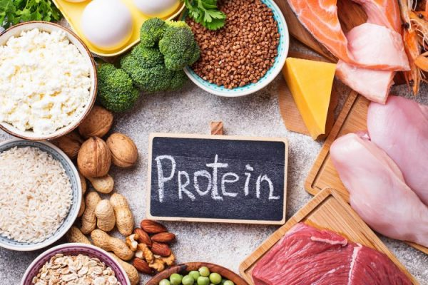 need to know about protein